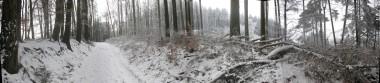 hw13-wald-panorama
